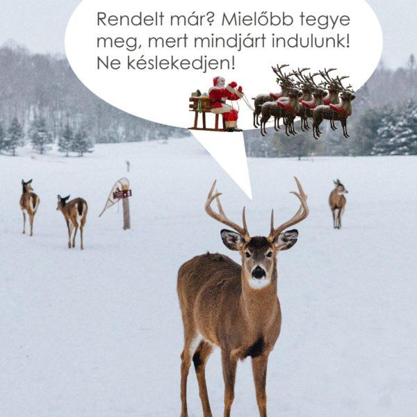 Karácsony_2020